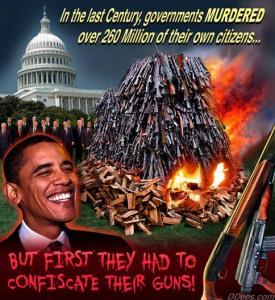 David_Dees_Obama_and_Gun_Confiscation